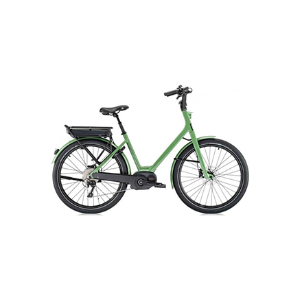Star Lot H - Electric Bike Image